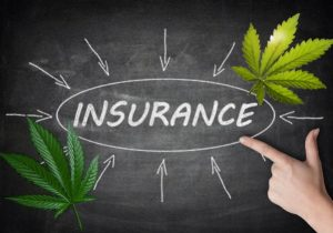 Marijuana collective insurance