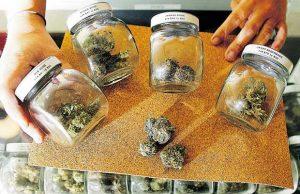 Marijuana dispensary applications
